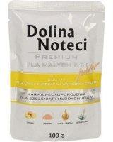 DNP DOLINA NOTECI PIES 100g JUNIOR żołądki / kurczaka /SASZETKA/12, VAT010936