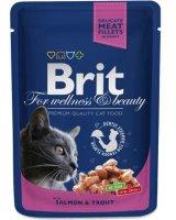 Brit Premium Cat Pouches with Salmon & Trout 100g, 8595602505999