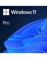 Software MICROSOFT Win 11 Pro 64Bit Eng Intl 1pk DSP OEI DVD Win Pro OEM English FQC-10528
